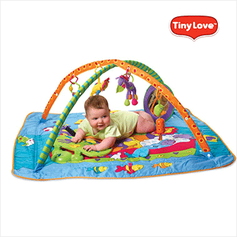 Tiny Love Playground Kick & Play